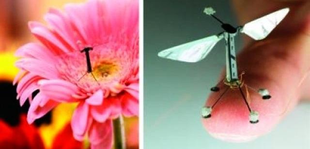 robots voladores como insectos