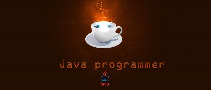 java y javascript desarrollo web